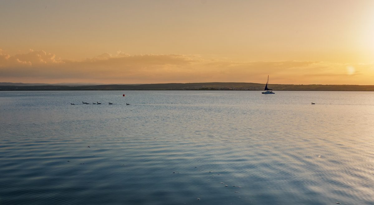 Lake Neusiedl in the evening sun